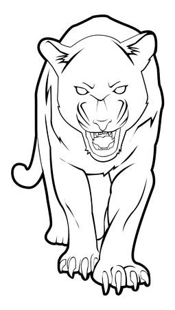 panther: panther
