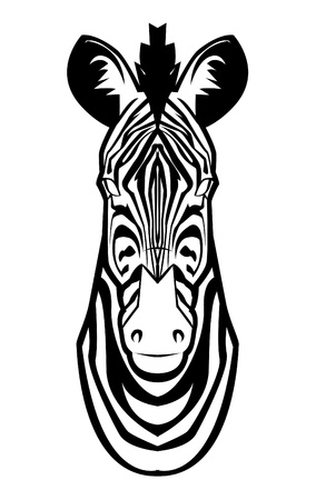 zebra Stock Vector - 17444668