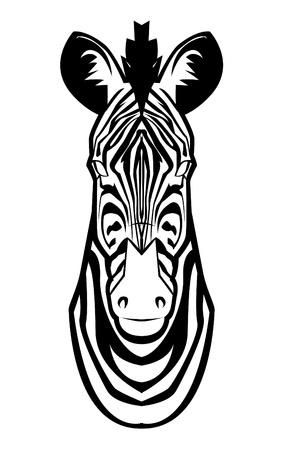 zebra Stock Vector - 17444668