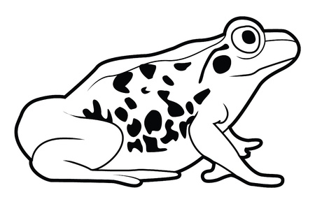 frog sign Stock Vector - 17444582