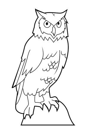 night owl: owl