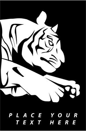 tiger Stock Vector - 17444507