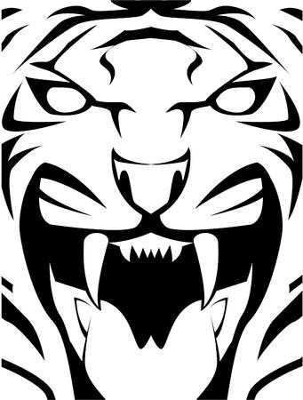 isolated tiger: tigre faccia