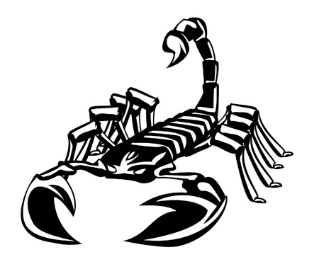 scorpion Stock Vector - 17444625