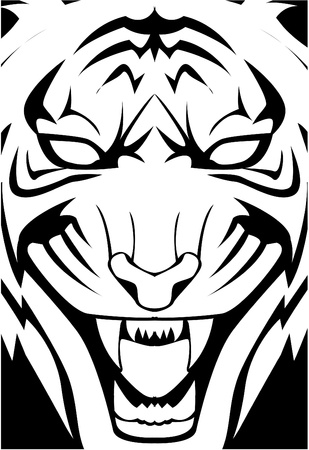tiger illustration Stock Vector - 17444498
