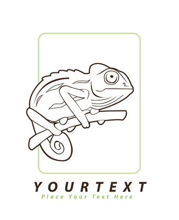 chameleon illustration Vector