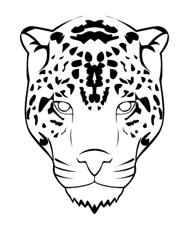 jaguar face Vector