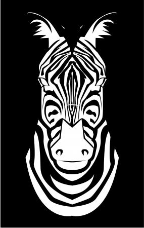 zebra face: zebra face