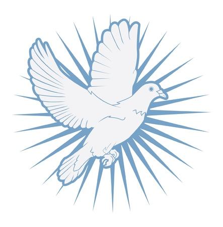 pigeons: colombe Illustration