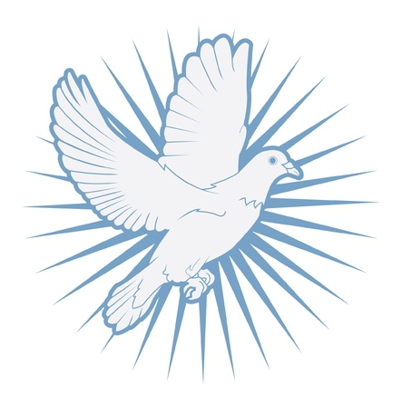 paloma caricatura: paloma