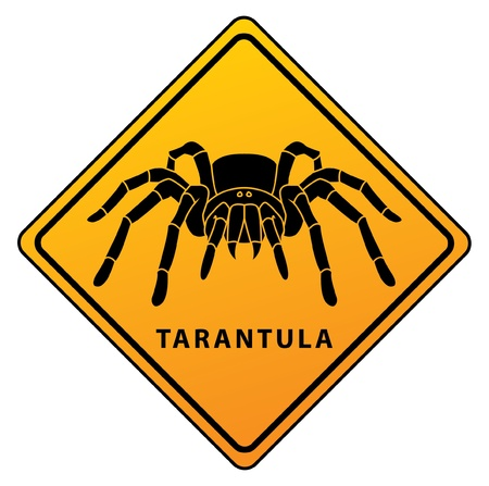 tarantula sign Stock Vector - 17444774