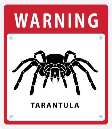 tarantula warning Stock Vector - 17444671