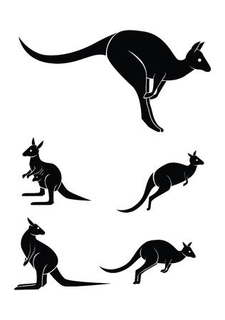 kangaroo set collection