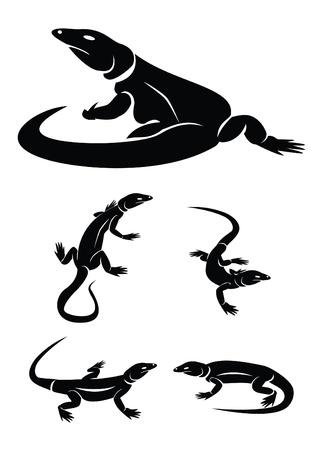 lizard set collection Vector
