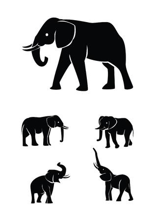 siluetas de elefantes: elefante colecci�n de conjuntos de