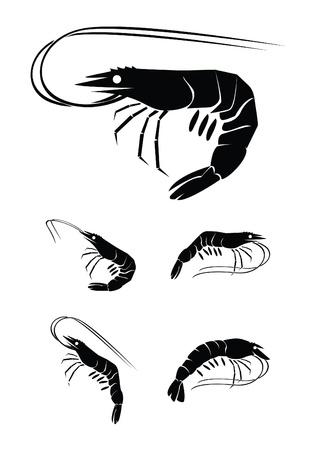 camarón colección de conjuntos de Ilustración de vector