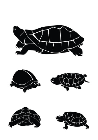 swimming silhouette: turtle Collection Set