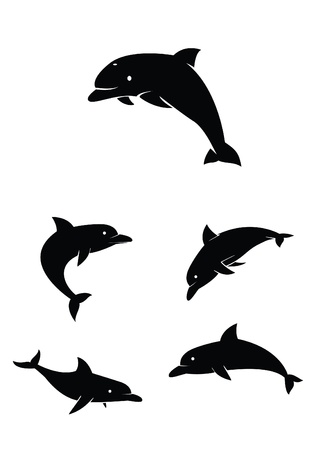 dolphin Collection Set Vector