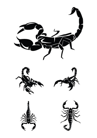 scorpion Collection Set Vector