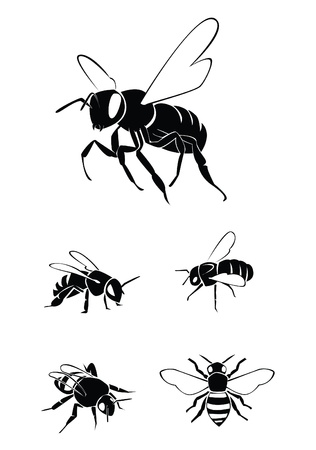 bee Collection Set Stock Vector - 17930038