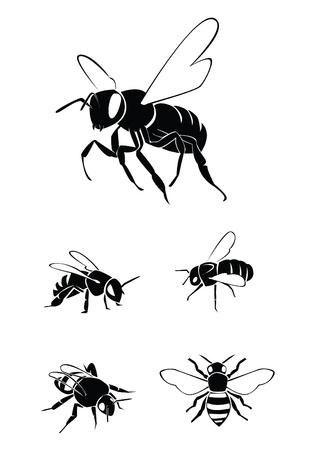 miel et abeilles: Set Collection d'abeille Illustration