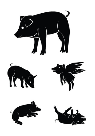 pig Collection Set Vector