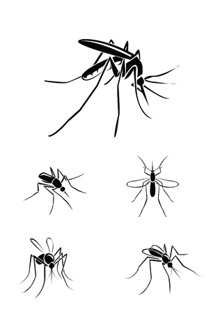 skin infections: mosquito Set Collection