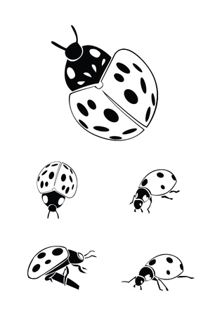 bug Collection Set Stock Vector - 17930049