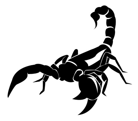 scorpion: scorpio