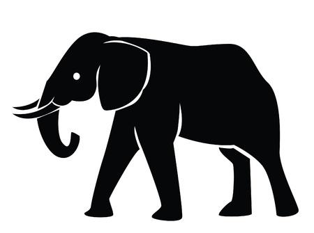 tusks: elephant