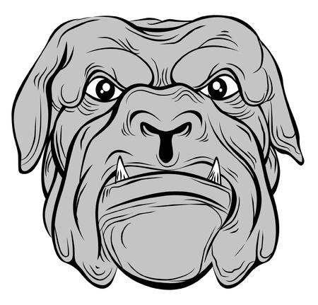 bull dog Stock Vector - 20325314