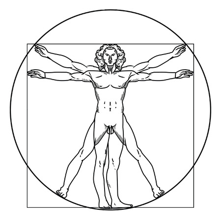 uomo vitruviano: Uomo Vitruviano Vettoriali
