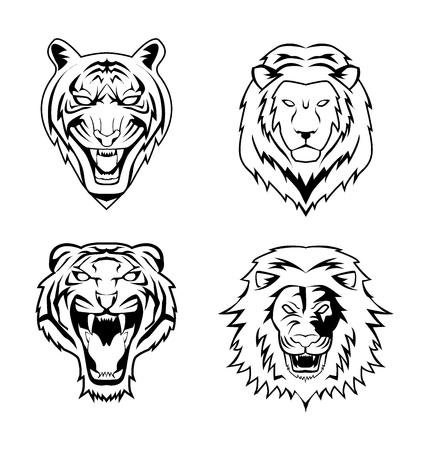 leones: Tiger Lion