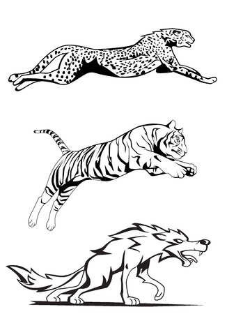 cheetah, tiger and wolf Illustration