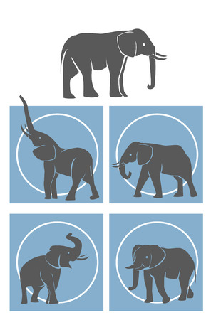 elephant Symbol Set Illustration