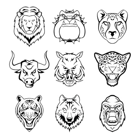 head of wild animal group Vector
