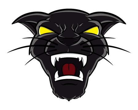angry cat: panther