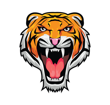 tigre blanc: Tigre Illustration