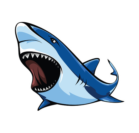 shark mouth: Shark Illustration