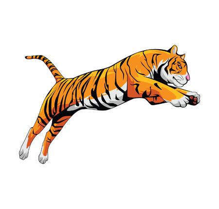 roaring: Tiger