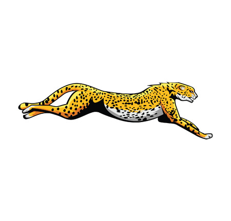 guepardo: Cheetah Vectores