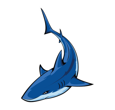 sharks: Shark Illustration