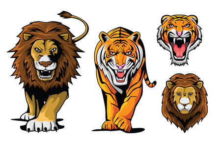 lioness: Lion And Tiger Illustration