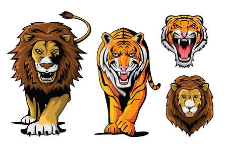 isolated tiger: Lion e Tiger Vettoriali
