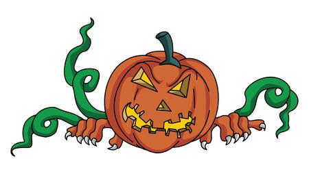Pumpkin Haloween Vector