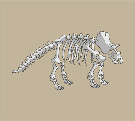 Triceratop Fossil Vector