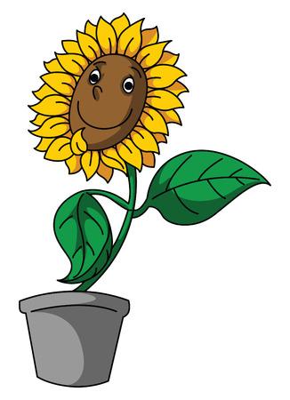 sun flower: Sun Flower Smile