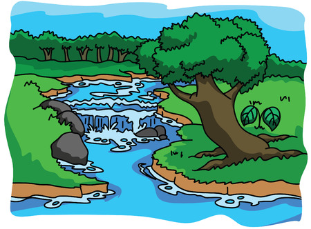 Forest and nature illustration Vector
