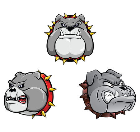 bull dog: Bull Dog Head Collection