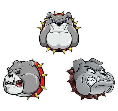 bull head: Bull Dog Head Collection